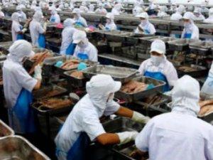Google Translate'le Ukrayna'da Eş Arayan Genç, Kiev'deki Konserve Fabrikasında İşbaşı Yaptı