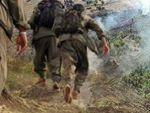 PKK da DEAŞ gibi kafa kesmeye başladı!