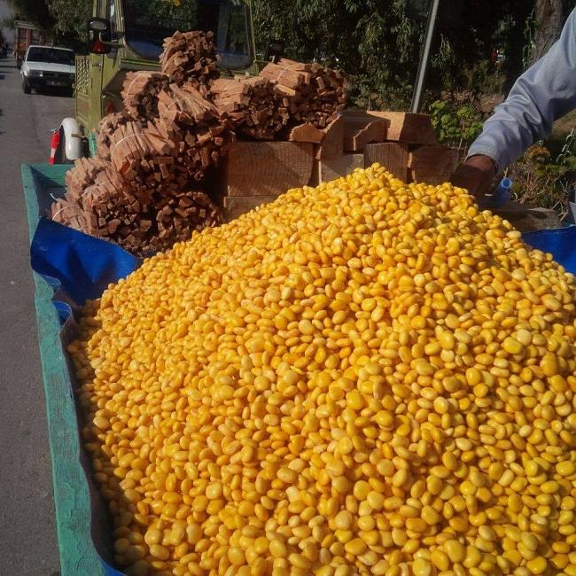 Termiye Konya'da çıra ile birlikte satılıyor