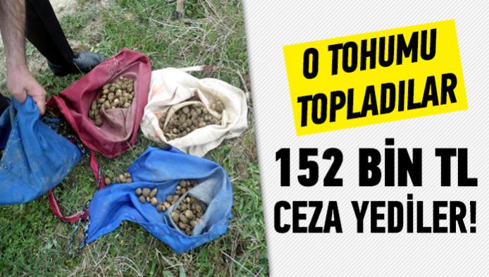 148.tohum-üretmeni̇n-cezasi.png