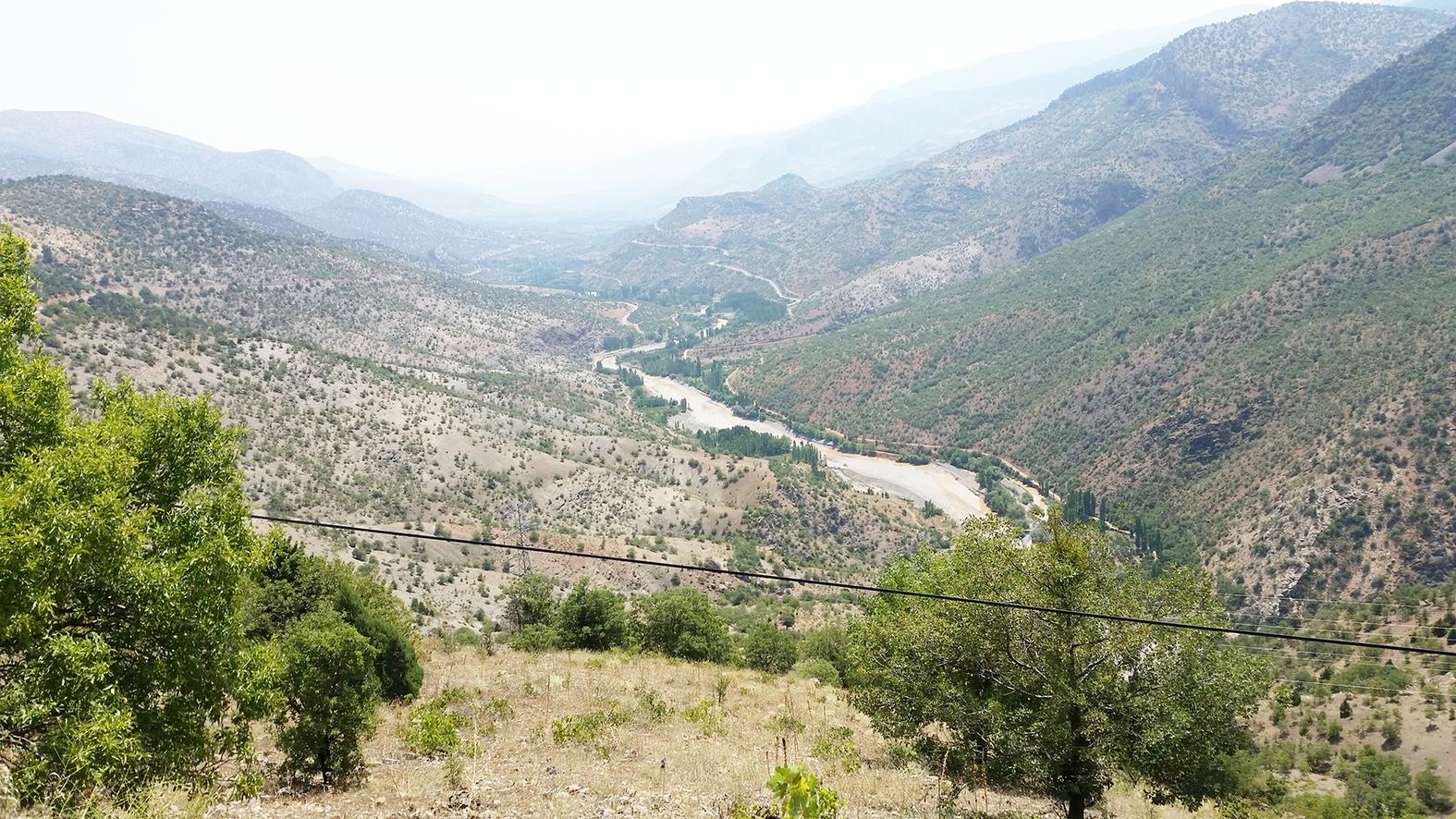 aladag-vadisinin-ucsuz-bucaksiz-uzakliklarda-dağlarin-yamaçlarinda-tamamen-üzüm-çubuklari-görülmekte.jpg